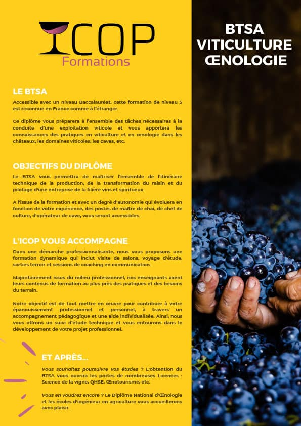 BTSA Viticulture Oenologie - ICOP Formations